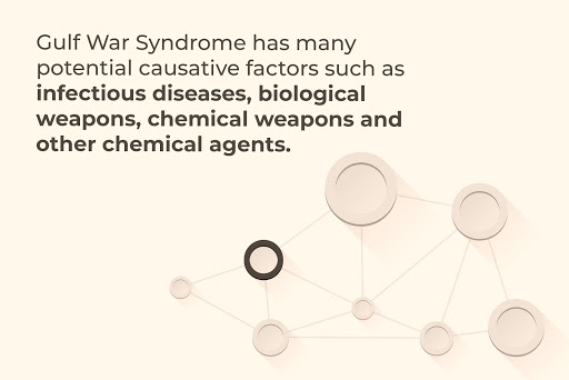 Gulf War Syndrome has many potential causative factors.